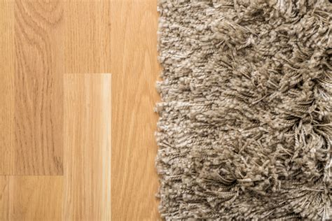 smelly rug how to clean smelly carpet
