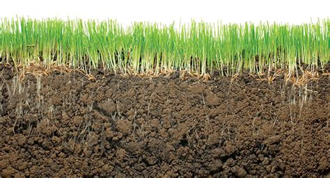 grass roots landscaping how to identify and adjust key irrigation parameters for