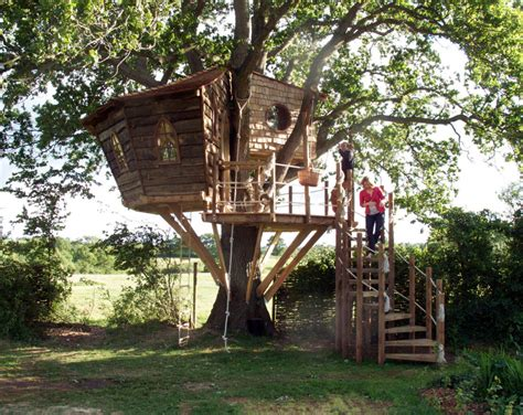 squirrel design tree houses 5 fun designs kids tree houses