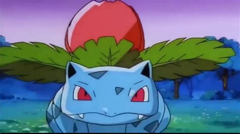 Kaos Go Bulbasaur Ivysaur Venusaur and go evolution bulbasaur ivysaur