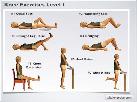 knee exercises illustrated therapeutic strengthening