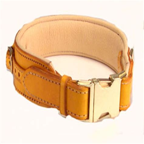 can dogs eat snaps leather collar with snap buckle