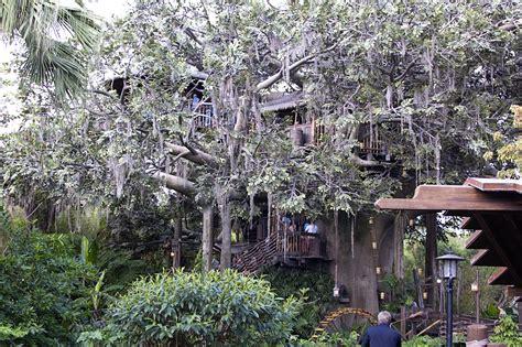 tree house movie swiss family robinson treehouse