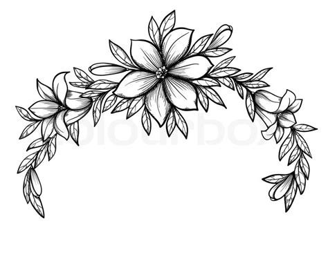 beautiful graphic drawing lily branch with leaves and buds