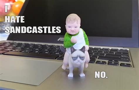 3d Meme - success kid on grumpy cat 3d print meme 3d model 3d