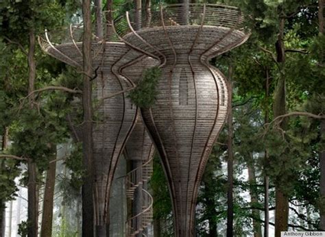 livable tree house plans livable tree house plans design of your house its good idea for your life