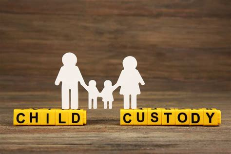 Custody Search Child Custody 730 Evaluation Cristin Lowe