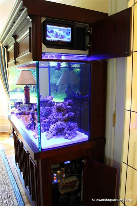 Small Living Room Ideas With Tv Don S High Tech Reef Pulls All The Stops For A Futuristic