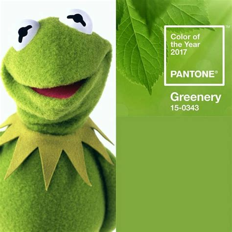 1000 images about greenery pantone color of the year 2017 on