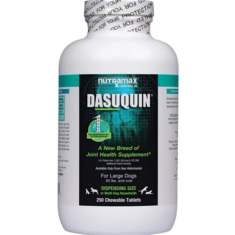 dasuquin for dogs dasuquin for dogs joint supplements allivet