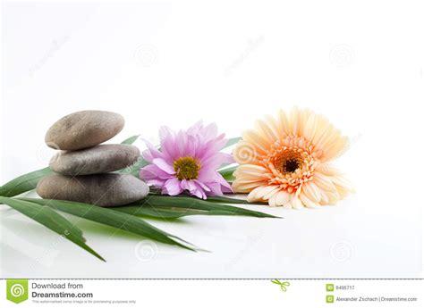 Bilder Mit Steinen Und Blumen by Blumen Und Steine Badekurortthema Lizenzfreie