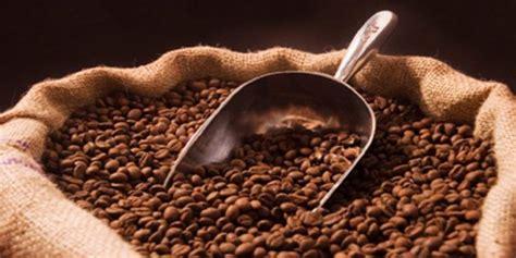 Teh Ekspor turun peringkat eksportir kopi indonesia perkebunannews