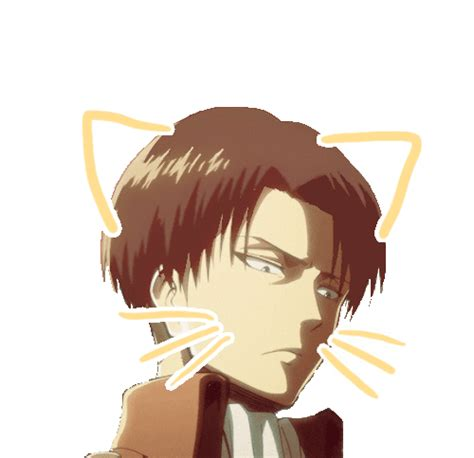 anime crack snk snk on crack gif gifs levi snk shingeki no kyojin attack