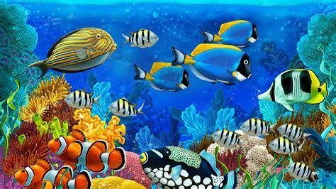 sea fish painting  ultra hd wallpapers