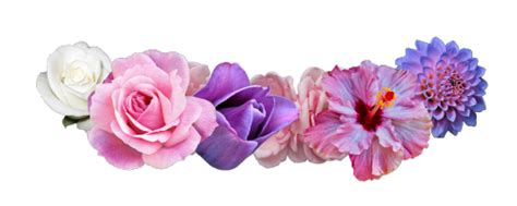 Cheerful Fantasia Flowercrown Flower Crown flower crown transparent png pictures free icons and png backgrounds