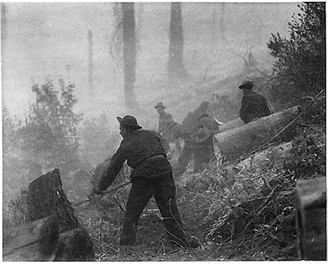 the new deal s forest army how the civilian conservation corps worked how things worked books today s document an enduring legacy of the new deal fdr
