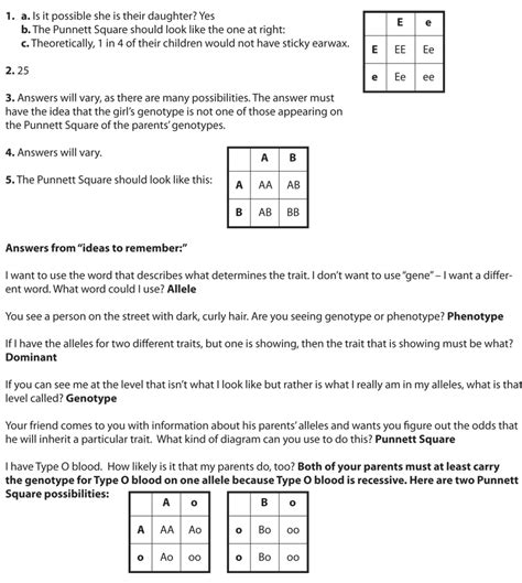 simpsons and human genetic probability worksheet answers genetic traits worksheet invigorite