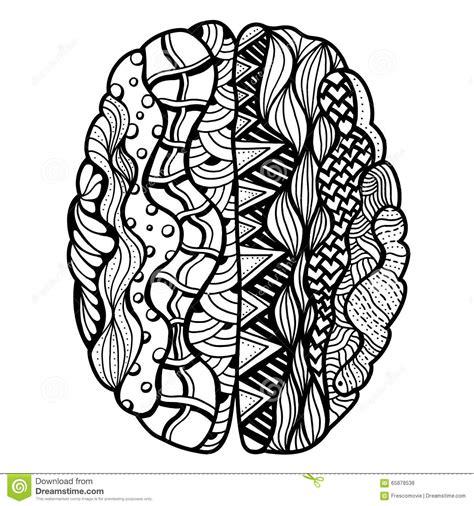 doodle brain ser humano brain doodle ilustraci 243 n vector imagen