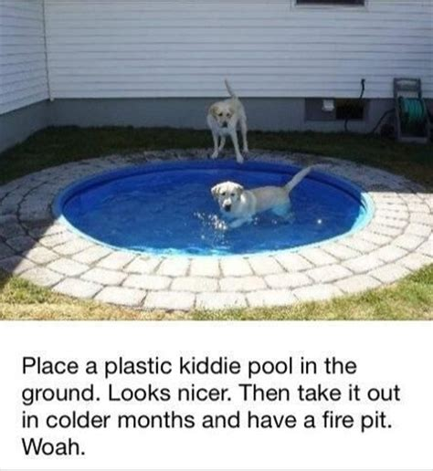 pool fire pit dog pool fire pit home life pinterest the winter