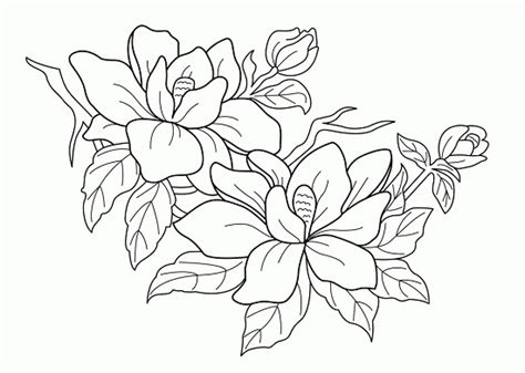 coloring pages free printable flowers printable flowers coloring pages coloring me