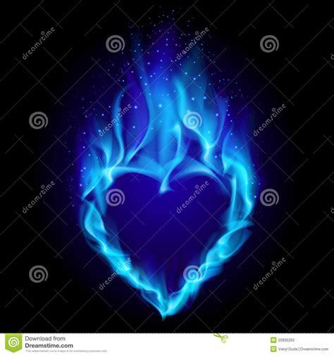 imagenes de love con fuego coraz 243 n en fuego azul fotograf 237 a de archivo imagen 20835262
