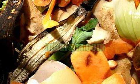 Pupuk Untuk Menyuburkan Bunga pemanfaatan limbah dapur sebagai penyubur tanaman