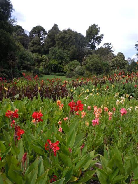Melb Botanical Gardens Royal Botanic Gardens Of Melbourne Melbourne By