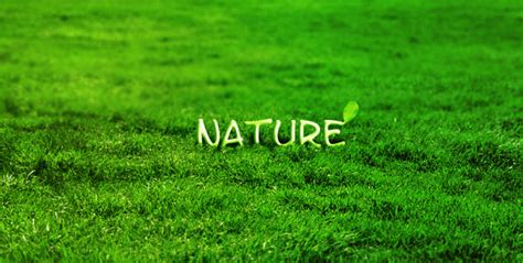 grass typography photoshop tutorial grass resources grass textures tutorials icons brushes