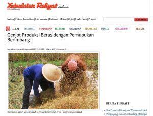 genjot produksi beras  pemupukan berimbang