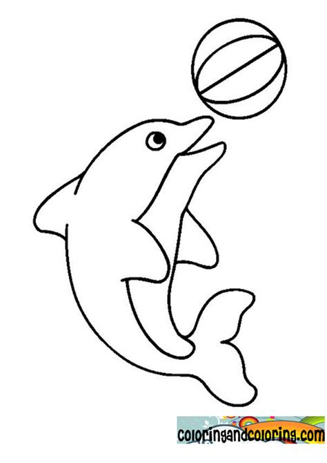 free coloring pages of baby dolphins