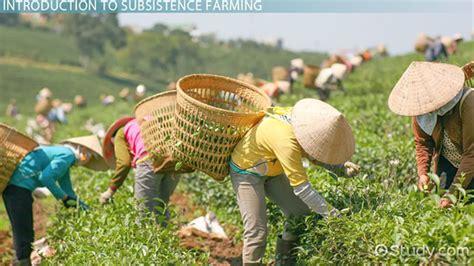 .subsistence farming