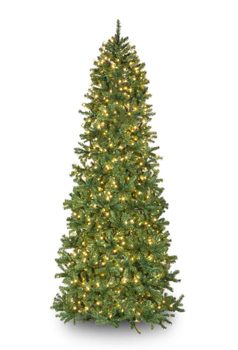 slender douglas fir prelit tree christmas lights etc