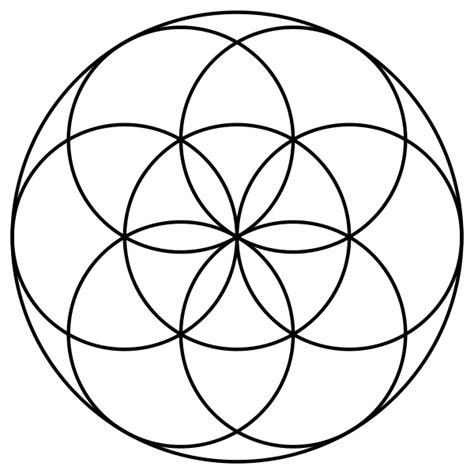 pattern of life meaning the flower of life the open mind