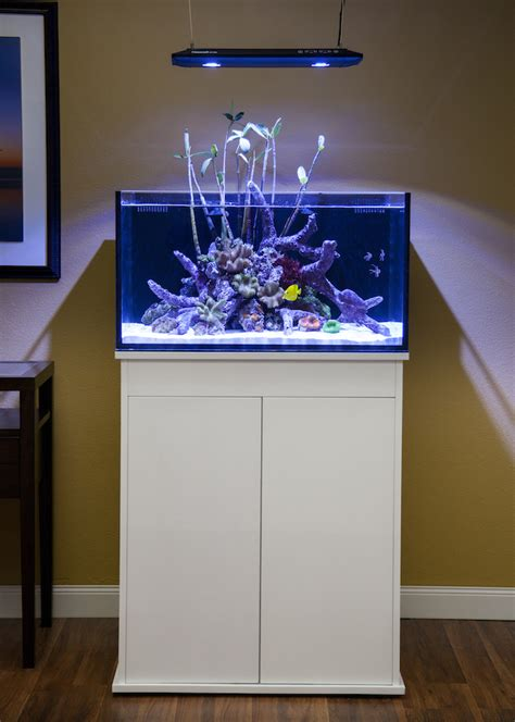r j enterprises fusion 50 gallon aquarium tank and cabinet fusion lagoons tanks in two sizes from innovative