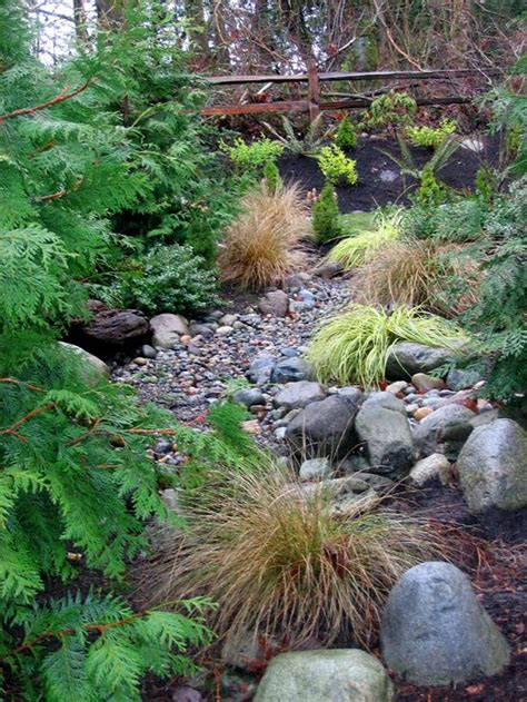 dry creek beds best of touscela how to build dry creek beds for