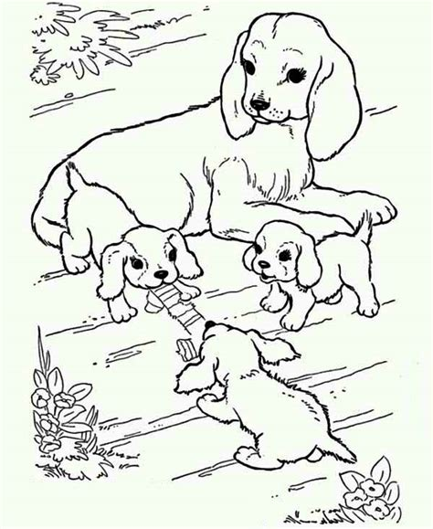 Puppy puppies play around their mother coloring page jpg