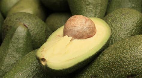 alimenti contengono molte fibre alimenti pieni di fibre ripassiamo quali cibi contengono