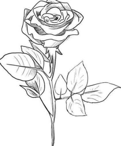 Casing Pola Bunga Matahari gambar bunga hitam putih