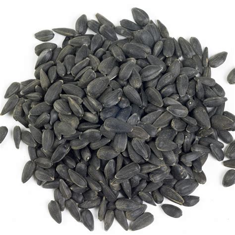is black sunflower seeds for birds black sunflower seeds for birds buy at vine house farm