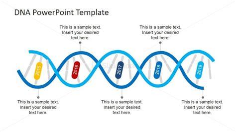template strand of dna dna strands timeline design for powerpoint slidemodel