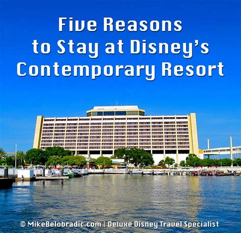 five luxurious reasons to stay mike belobradic top five reasons to stay at disney s