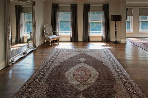 decorator rugs outlet 100 home decorators collection rugs modern area rugs allmod safavieh florida shag collection