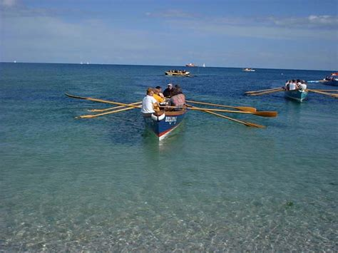 catamaran for sale ireland sculling boats for sale ireland