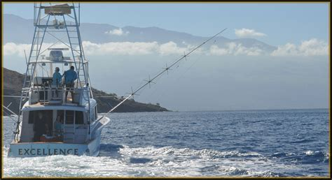 maui boat charters excellence maui luxury sport fishing yacht maui fishing