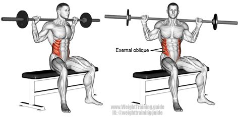 seated barbell twist exercise instructions  video
