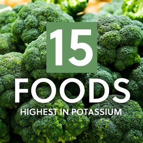 vegetables low in potassium 15 foods highest in potassium