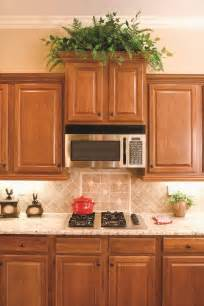 plants above kitchen cabinets best kitchen plants plants for kitchen to decorate it