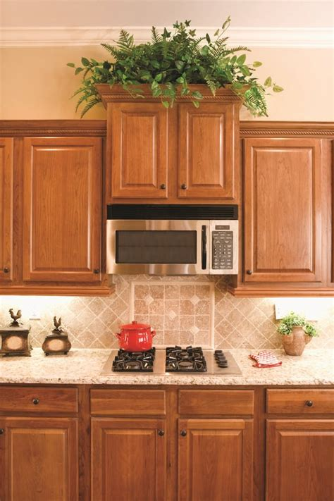 plants above kitchen cabinets best kitchen plants plants for kitchen to decorate it