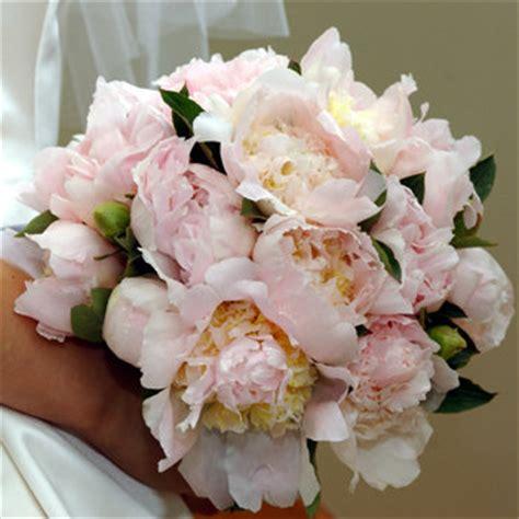 fiori simili alle calle fiori andreoni addobbi per cerimonie bouquet