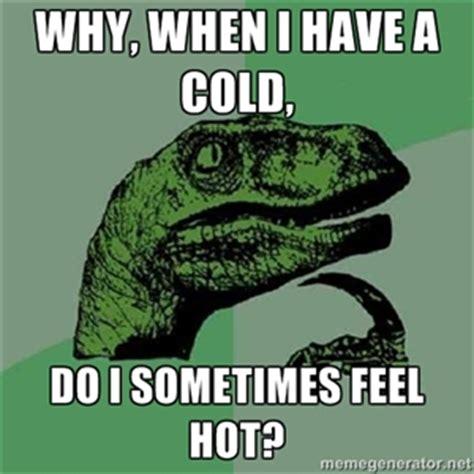 Have A Cold Meme - a cold meme 28 images have a head cold lines of